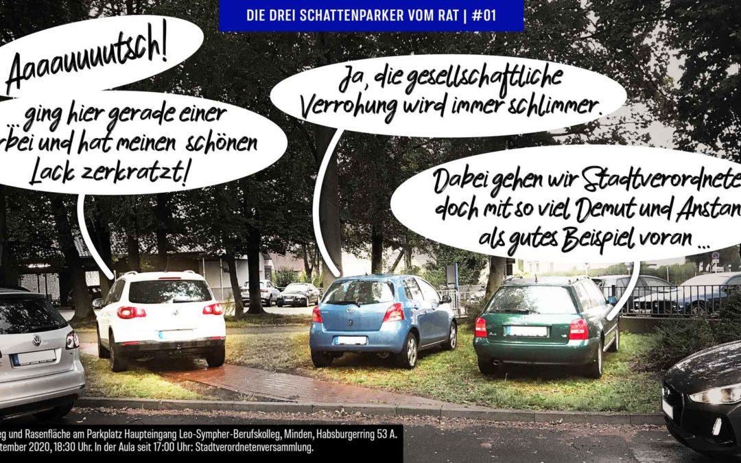 So geht Stadtverordnetenversammlung: einer parkt auf'm Gehweg, zwei auf der Grünfläche …